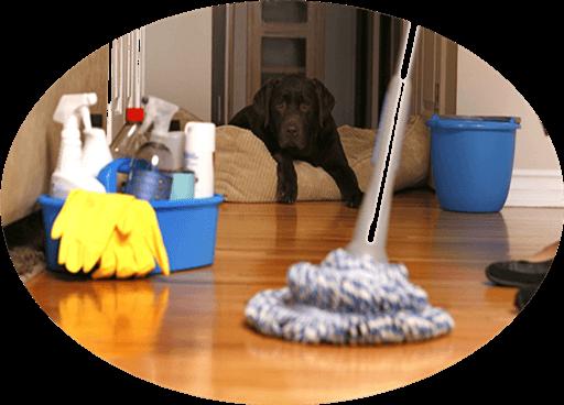 Çankaya Temizlik Firmaları / Günaydın Temizlik